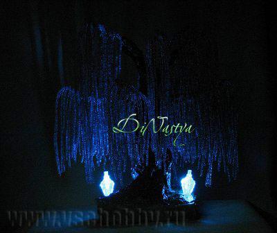 фотография ночное дерево эйва