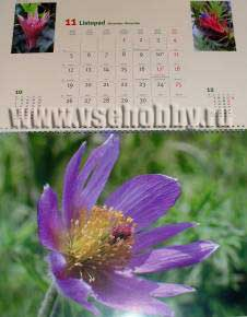 Страница календаря станет тубусом для подарка