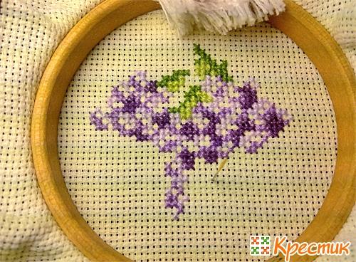 Фото для вышивки с крестиком