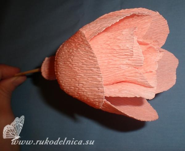 Как сделать розы из конфет