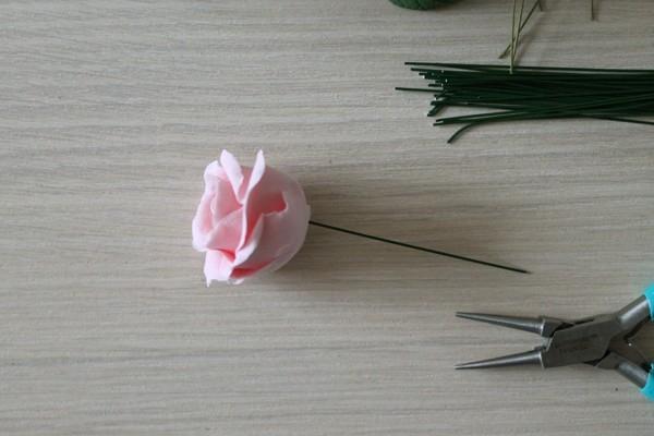 Цветок розы на стебле