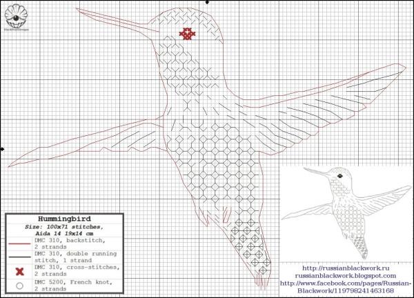 Схема вышивки колибри в технике Блэкворк