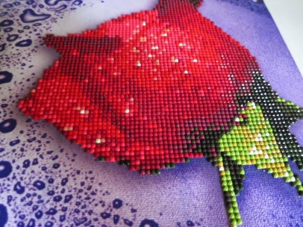 Роза кристаллами