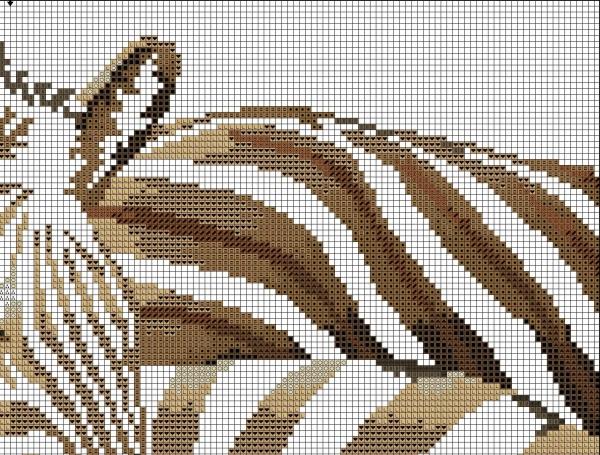 Схема для вышивки крестом зебры