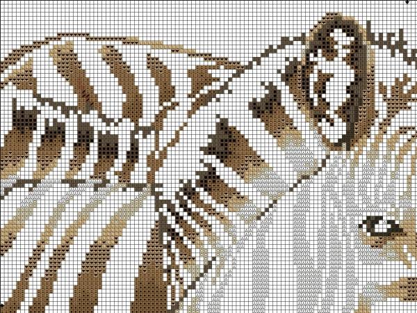 Схема вышивки крестом зебры