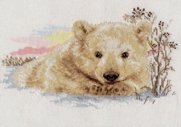 Северный медведь