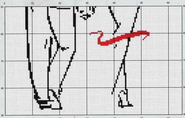 Схема для вышивки крестом пара с букетом