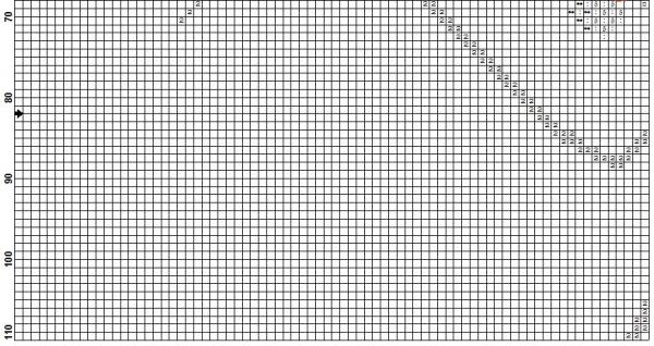 Схема для вышивки крестом девушки с букетом