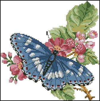 Сине-голубая бабочка