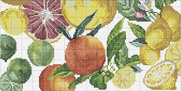 Схема для вышивки крестом цитрусовых
