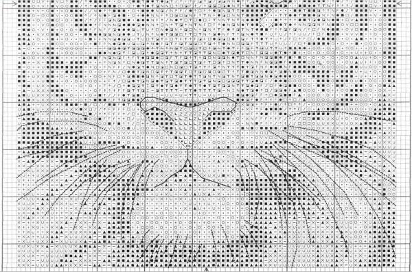 Схема для вышивки крестом красавца тигра