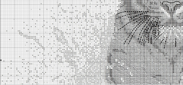 Схема для вышивки крестом тигра в брызгах воды