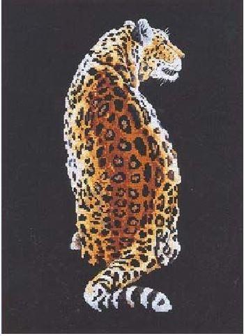 Леопард на темном фоне
