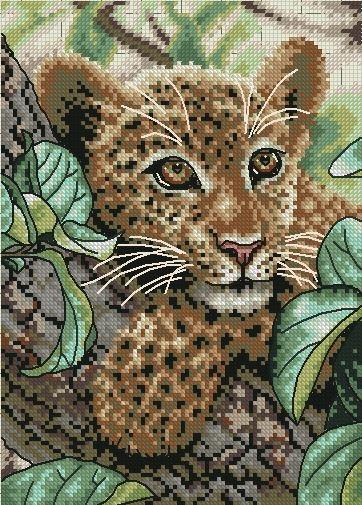 Леопард-малыш
