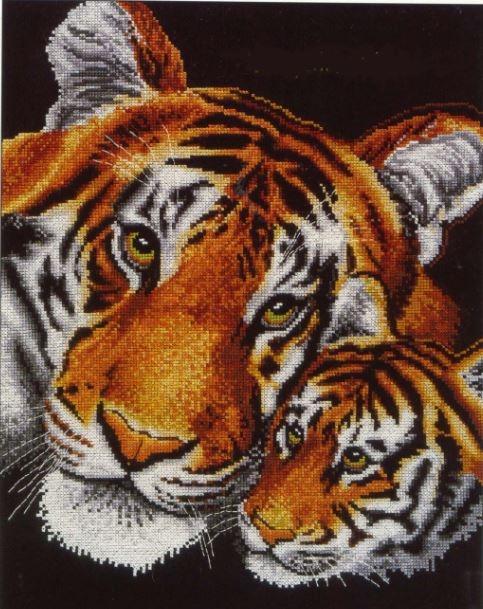Отец и сын тигры