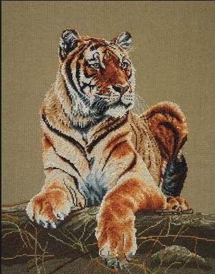 Тигр великолепный