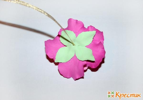 Вид цветочка со стороны чашелистика