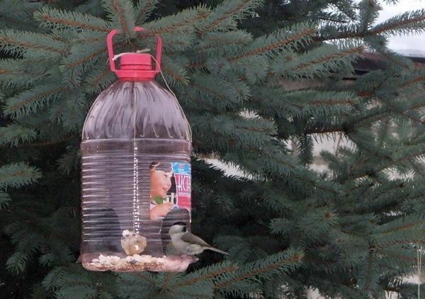 Кормушка для птиц из 5л ёмкости