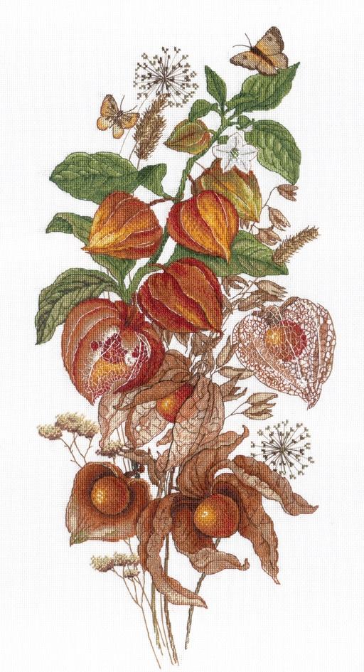 Изумрудная ягода физалис