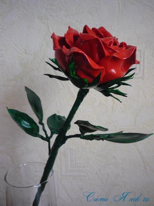 пышная роза