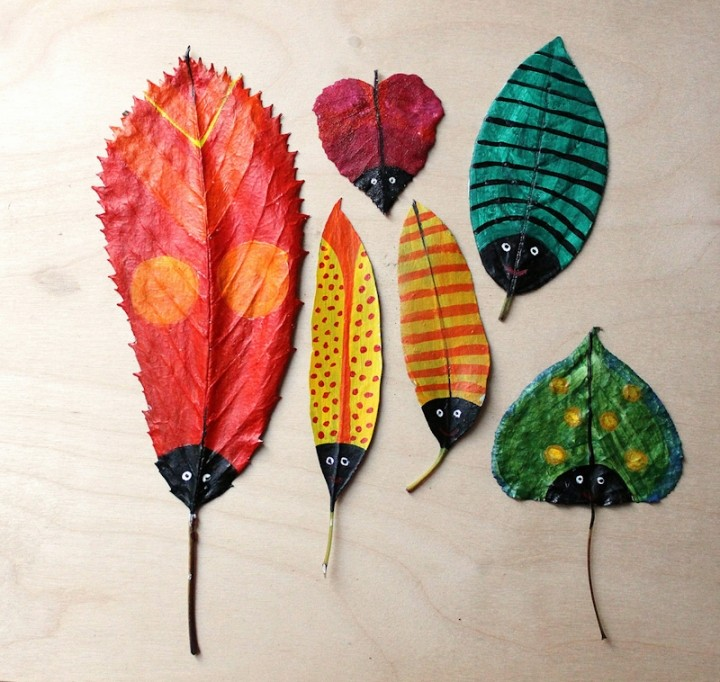 Hazel Terry Leaf Bugs