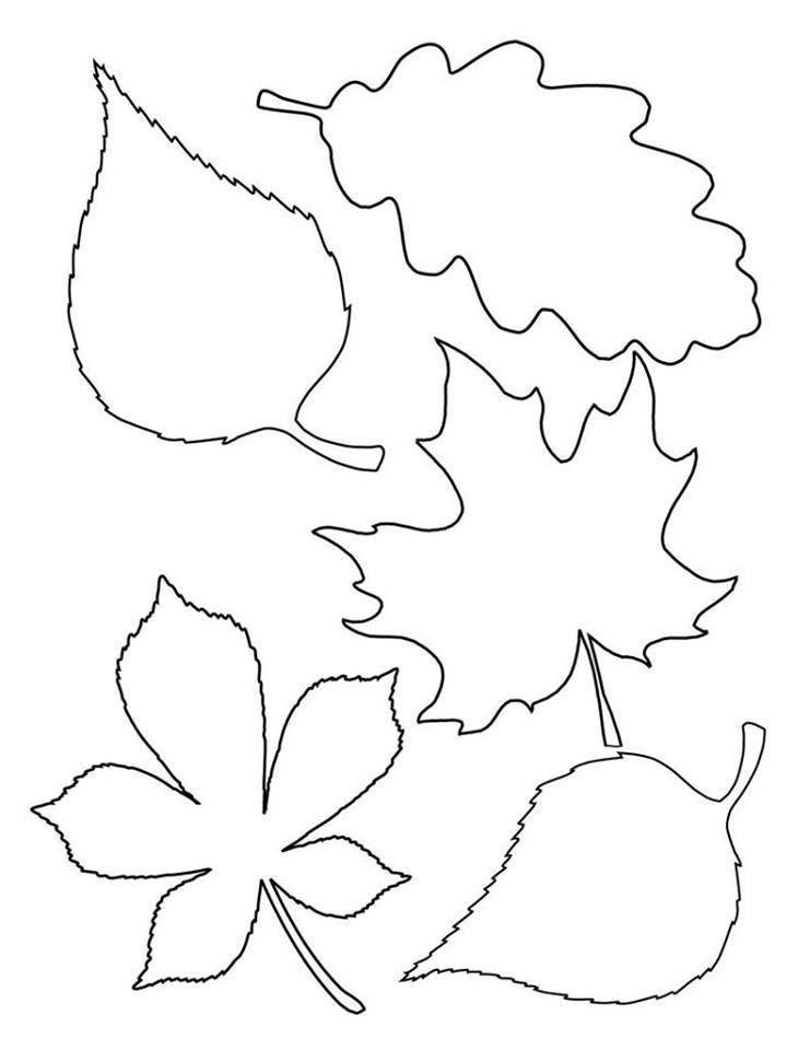 Шаблон листьев для вырезания