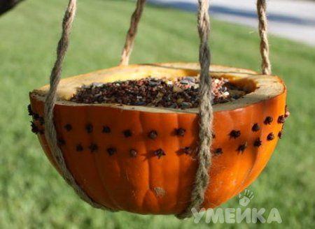 Кормушка из тыквы в виде чаши
