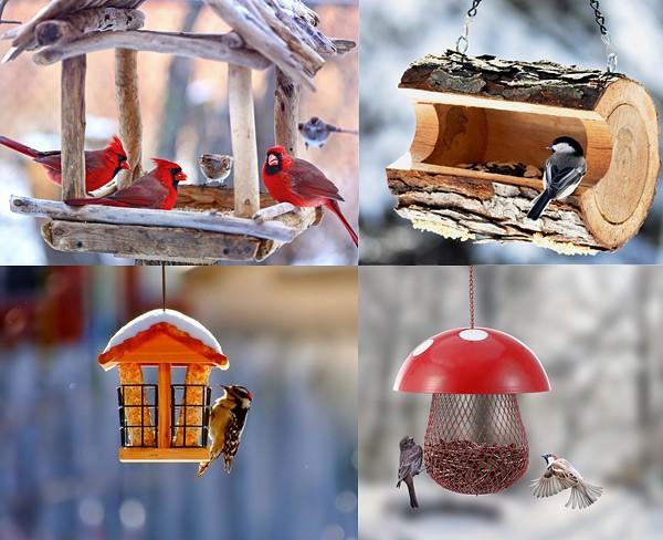 15 способов сделать кормушку для птиц