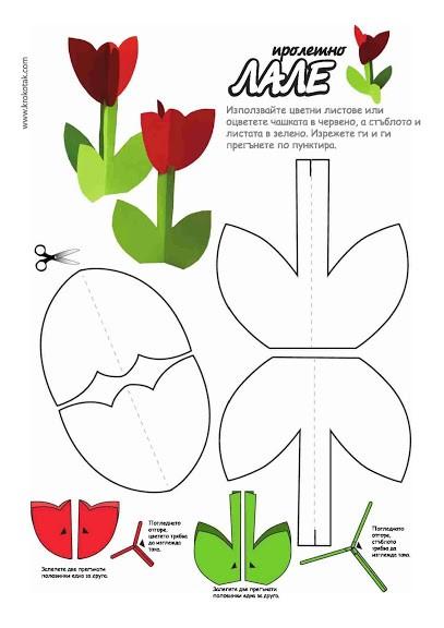 объемные тюльпаны схема