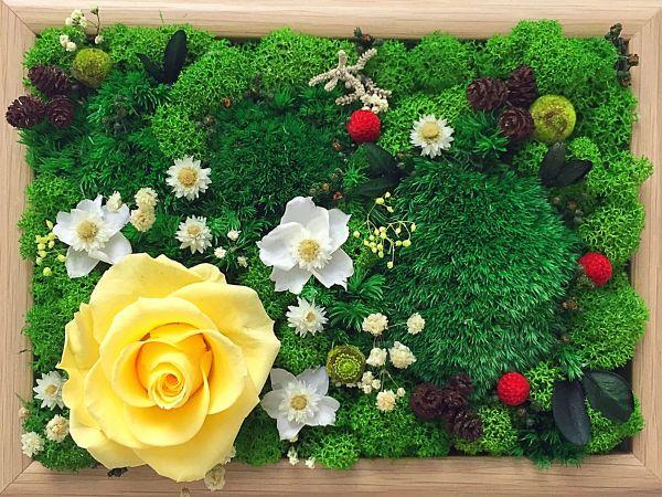 Фитокартина из мха и цветов