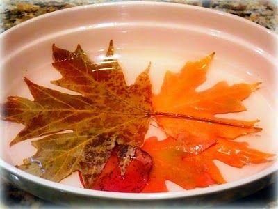 Листья в растворе
