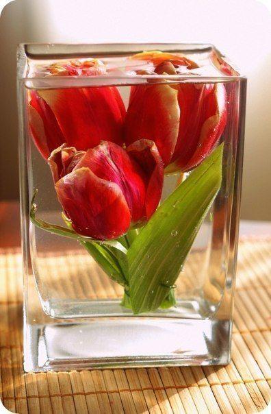 Цветы в открытой емкости
