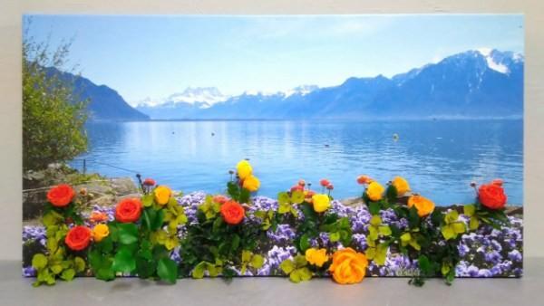 Живая 3D-картина из стабилизированных растений
