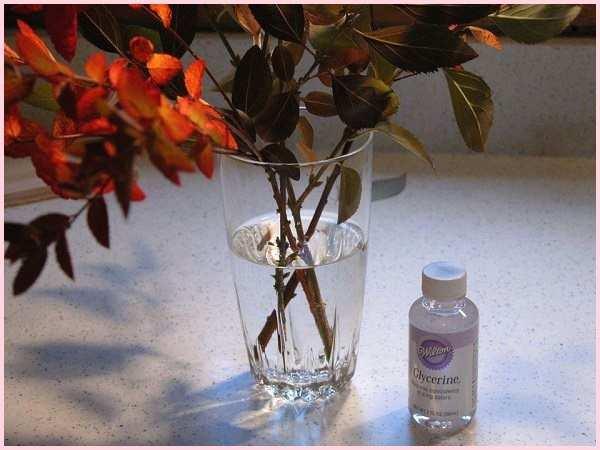 Процесс напитывания цветов глицерином