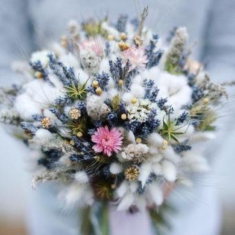 Сухоцветы и букеты из них