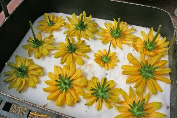 Цветы в духовке