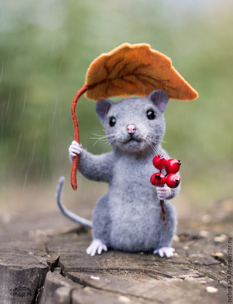 крысенок под листом